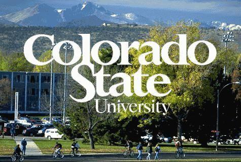 Tn_colorado-state-university